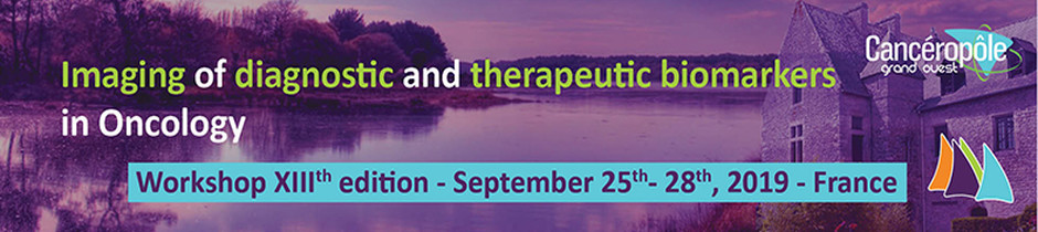 imaging-of-diagnostic-and-therapeutic-biomarkers-in-oncology-workshop